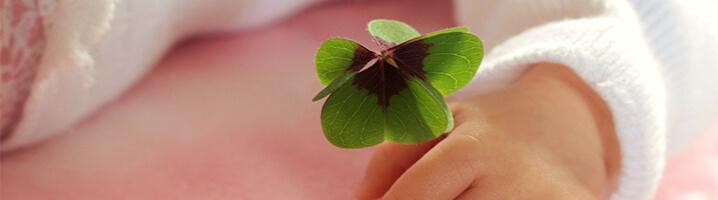 four-leaf-clover-1892660_1280_1